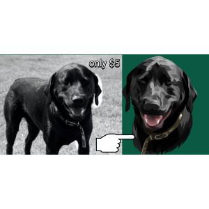 Gambar jasa ubah foto pets menjadi kartun
