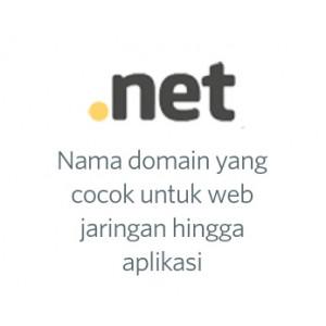 Gambar Domain .net murah