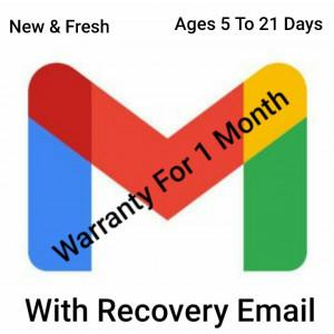 Gambar 5 Gmail Account | Dengan Email Pemulihan | Usia 5 s/d 7 Hari